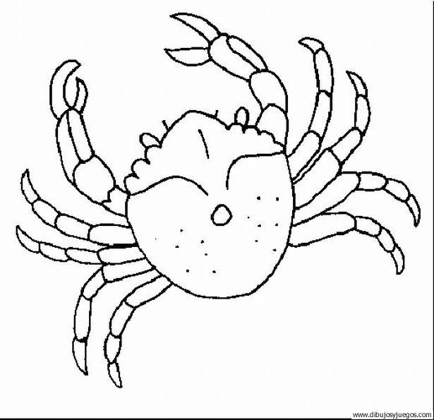 dibujo-de-cangrejo-002 | Dibujos y juegos, para pintar y colorear