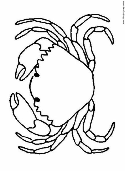 dibujo-de-cangrejo-004 | Dibujos y juegos, para pintar y colorear