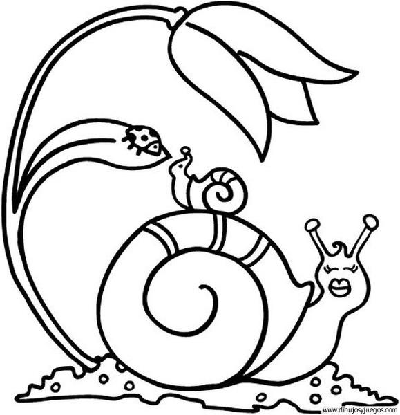 dibujo-de-caracol-06 | Dibujos y juegos, para pintar y colorear