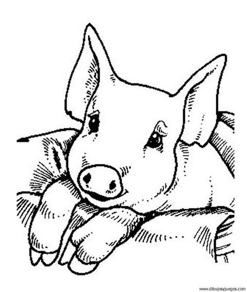 dibujo-de-cerdo-26 | Dibujos y juegos, para pintar y colorear
