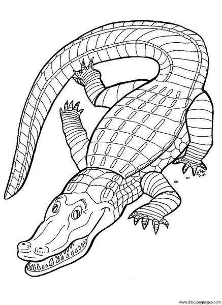 dibujo-de-cocodrilo-44 | Dibujos y juegos, para pintar y colorear