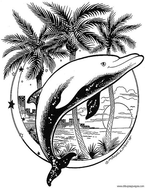 dibujo-de-delfin-021 | Dibujos y juegos, para pintar y colorear