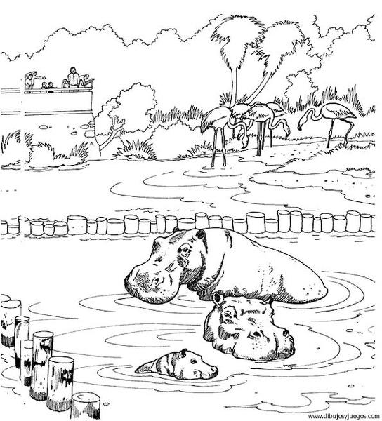 dibujodehipopotamo006  Dibujos y juegos para pintar y colorear