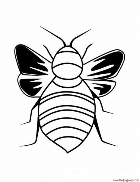 escarabajo-01 | Dibujos y juegos, para pintar y colorear
