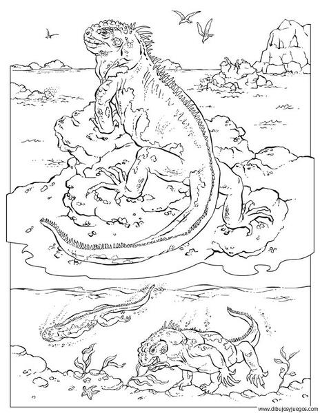 dibujo-de-lagartos-004   Dibujos y juegos, para pintar y colorear