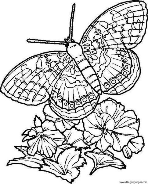 dibujo-de-mariposa-072 | Dibujos y juegos, para pintar y colorear