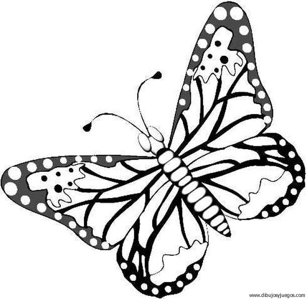 dibujo-de-mariposa-073 | Dibujos y juegos, para pintar y colorear