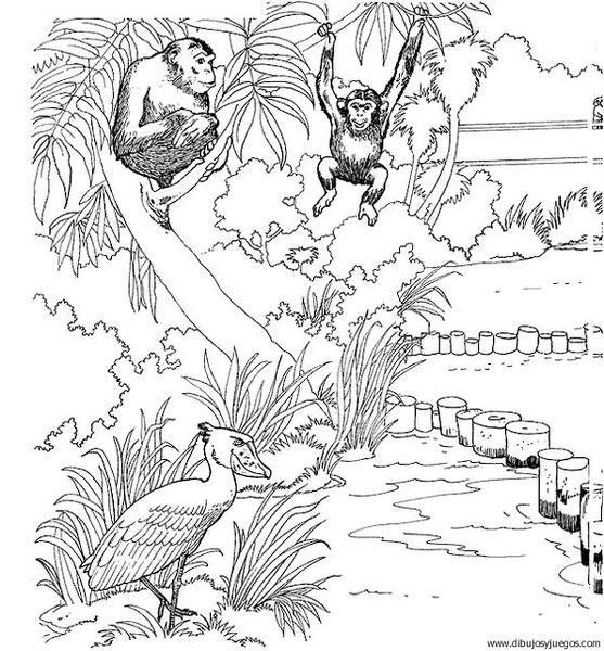 dibujo-de-mono-033 | Dibujos y juegos, para pintar y colorear