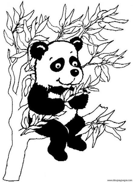 dibujo-de-oso-panda-003 | Dibujos y juegos, para pintar y colorear