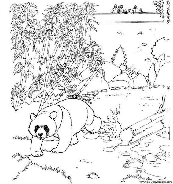 Dibujos De Osos Pandas Para Colorear E Imprimir Imagui