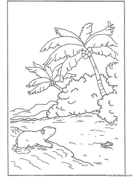 dibujo-de-oso-polar-007   Dibujos y juegos, para pintar y colorear