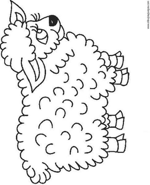 dibujo-de-oveja-007 | Dibujos y juegos, para pintar y colorear