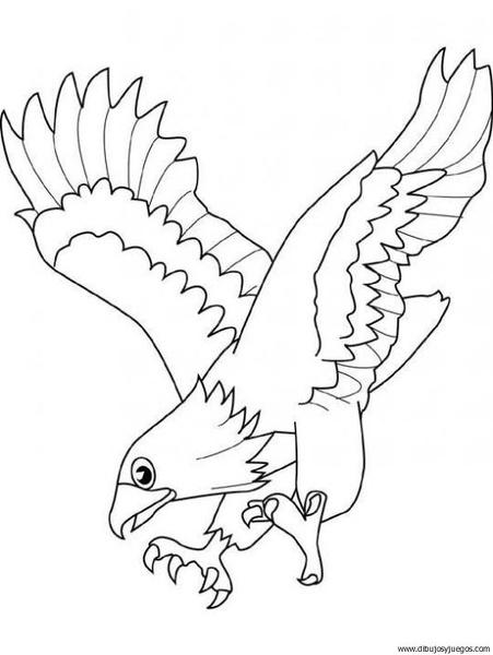 dibujo-de-aguila-002 | Dibujos y juegos, para pintar y colorear