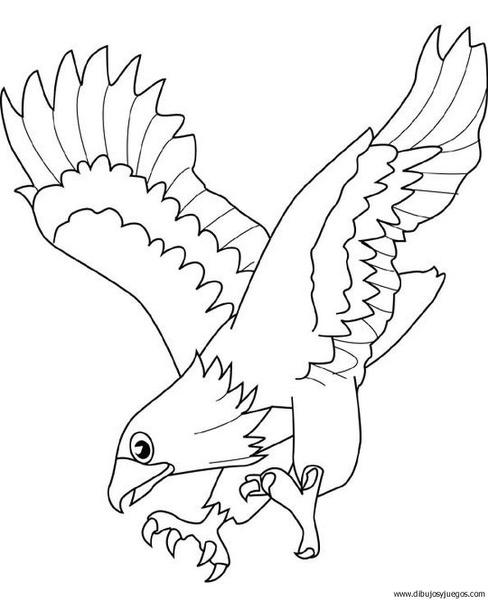 dibujo-de-aguila-012 | Dibujos y juegos, para pintar y colorear