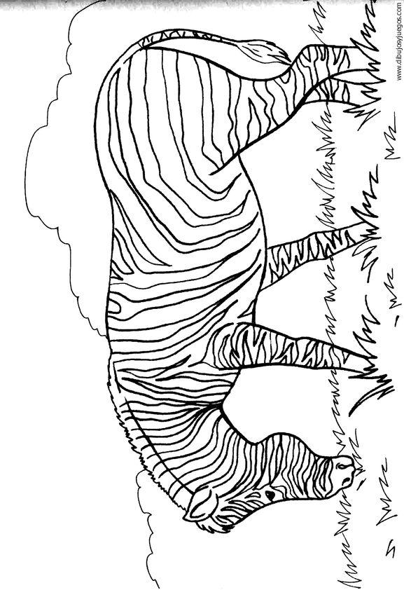 dibujo-de-cebra-09 | Dibujos y juegos, para pintar y colorear