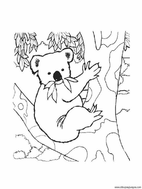dibujo-de-koala-002 | Dibujos y juegos, para pintar y colorear