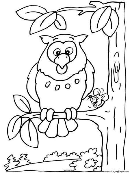 dibujo-de-buho-004 | Dibujos y juegos, para pintar y colorear