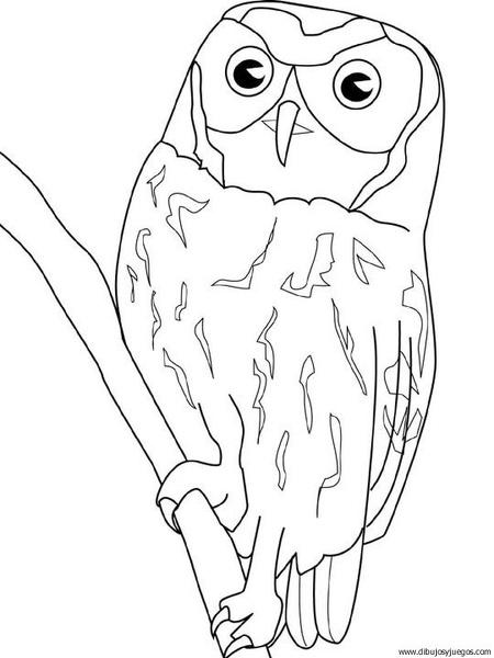 dibujo-de-buho-029 | Dibujos y juegos, para pintar y colorear