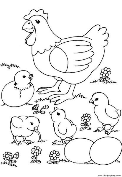 dibujo-de-gallina-006 | Dibujos y juegos, para pintar y colorear