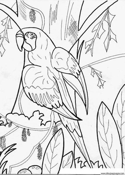 dibujodeloro016  Dibujos y juegos para pintar y colorear