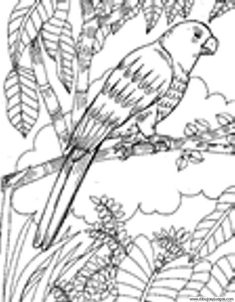 dibujodeloro048  Dibujos y juegos para pintar y colorear