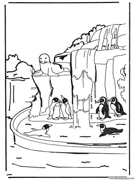 dibujo-de-pinguino-003 | Dibujos y juegos, para pintar y colorear