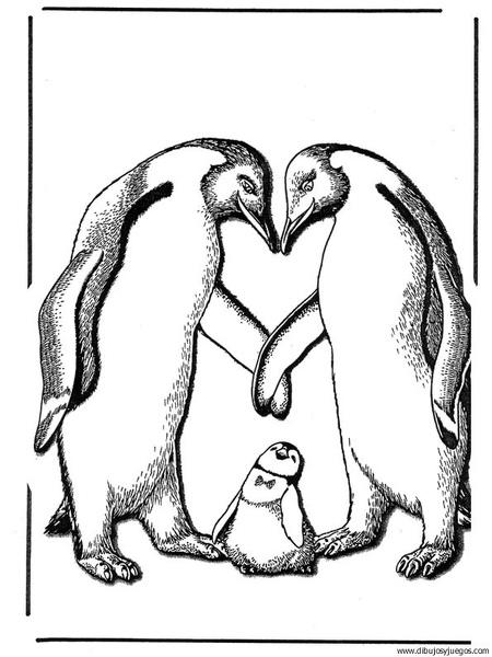 dibujo-de-pinguino-008 | Dibujos y juegos, para pintar y colorear