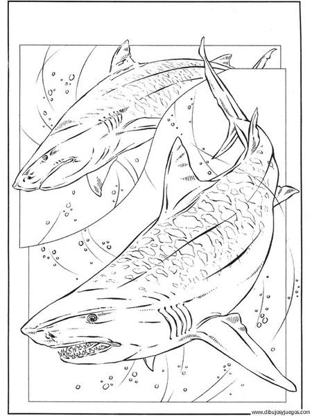 Dibujo De Tiburon 045 Dibujos Y Juegos Para Pintar Y Colorear