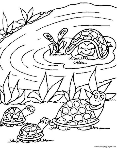 dibujodetortuga039  Dibujos y juegos para pintar y colorear