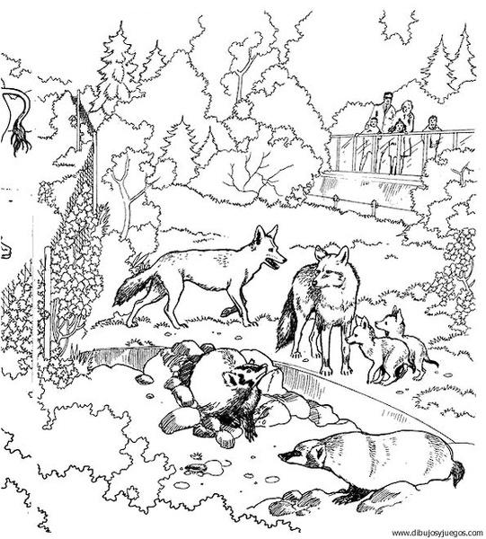 Dibujo De Zorro 005 Dibujos Y Juegos Para Pintar Y Colorear