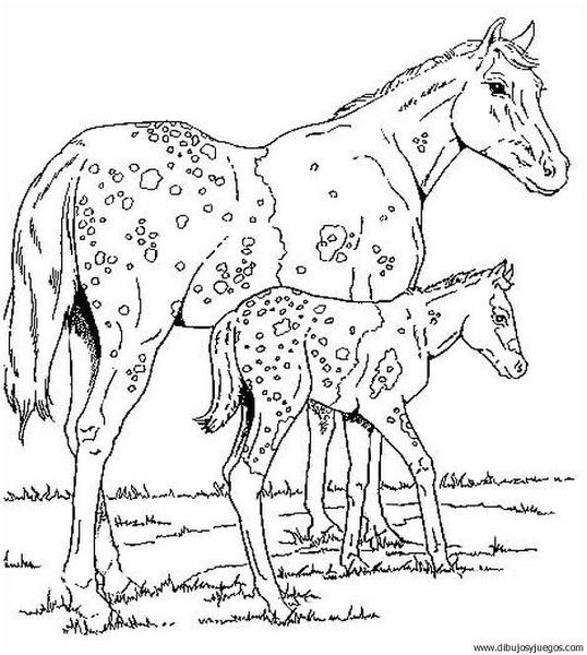 dibujo-de-caballo-016  Dibujos y juegos, para pintar y ...