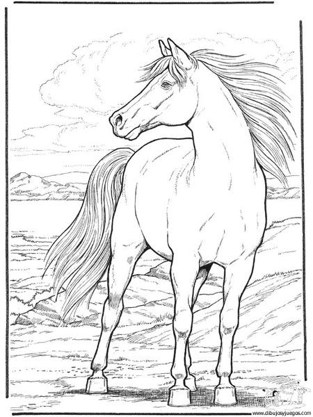 dibujo-de-caballo-048 | Dibujos y juegos, para pintar y colorear
