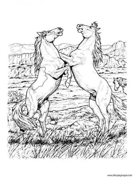 dibujo-de-caballo-089 | Dibujos y juegos, para pintar y colorear