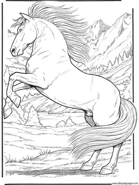 dibujo-de-caballo-122  Dibujos y juegos, para pintar y ...