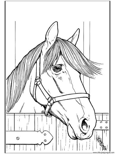 dibujo-de-caballo-154 | Dibujos y juegos, para pintar y colorear