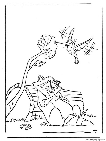 mapache-colibri | Dibujos y juegos, para pintar y colorear