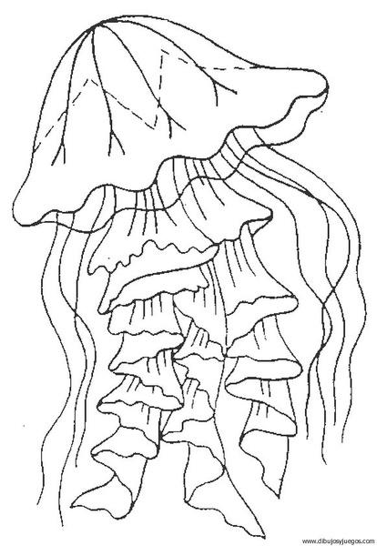 medusa-01 | Dibujos y juegos, para pintar y colorear