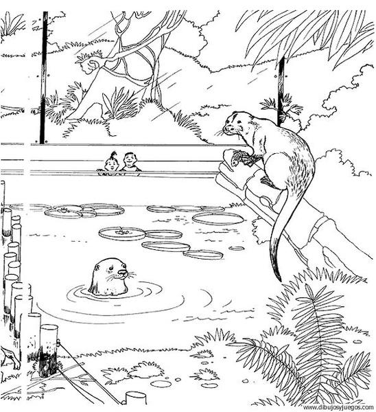 nutria-04 | Dibujos y juegos, para pintar y colorear