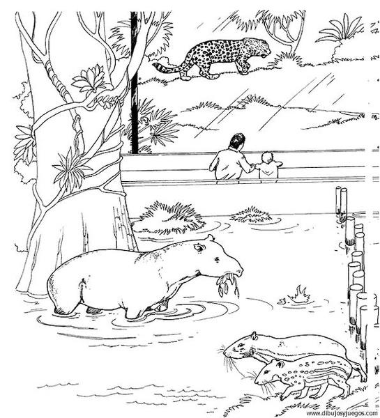 Tapir 01 dibujos y juegos para pintar y colorear for Tapir coloring page