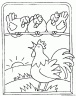 dibujo-de-gallo-005