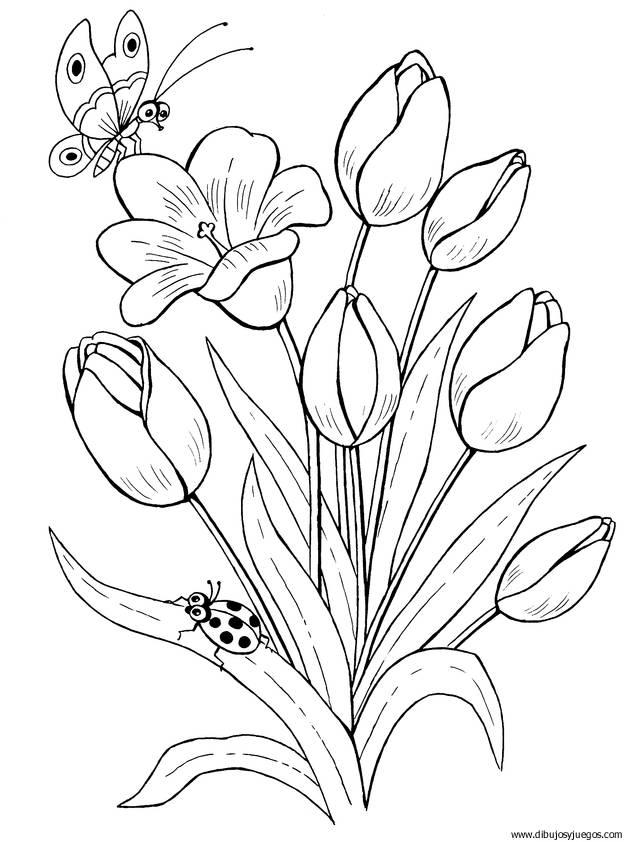 dibujo-flores-tulipanes-019 | Dibujos y juegos, para pintar y colorear