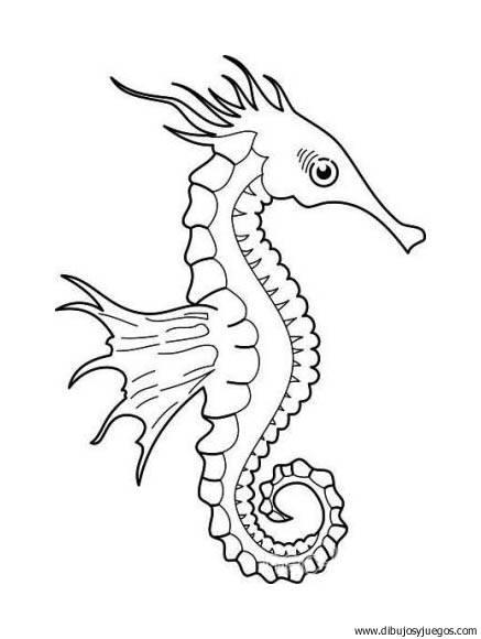 dibujo-de-caballitos-de-mar-008 | Dibujos y juegos, para pintar y ...