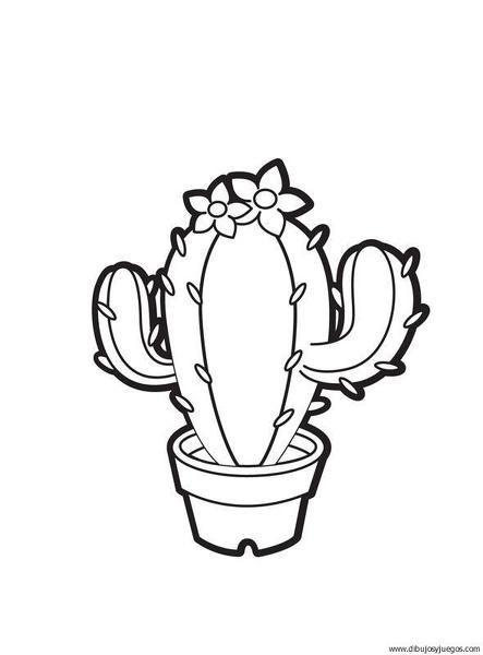 plantas-cactus-02 | Dibujos y juegos, para pintar y colorear