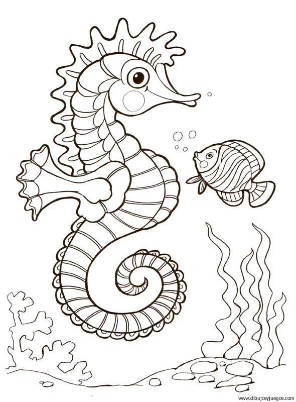 dibujo-de-caballitos-de-mar-015 | Dibujos y juegos, para pintar y ...